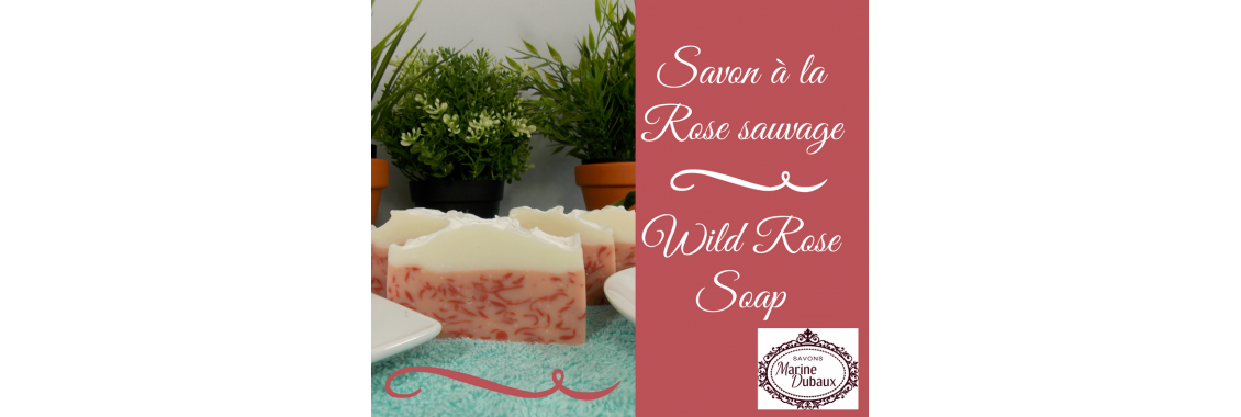 savon-a-la-rose-sauvage